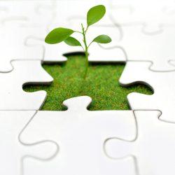 business team growth hiring